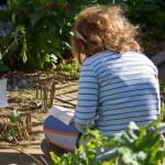 Jardins et talents en fête à Paris