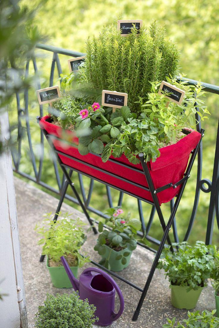 Le balcon un petit îlot de verdure 8