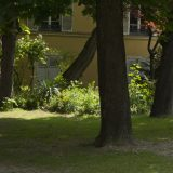 Visite du jardin partagé Saint-Serge 14