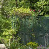 Visite du jardin partagé Saint-Serge 13