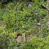 Terrasse fleurie du jardin partagé Saint-Serge - Paris 75019