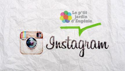 Le p'tit Jardin d'Eugènie sur Instagram